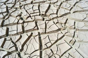 arid-cracked-ground